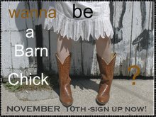 November BARN CHICK meeting